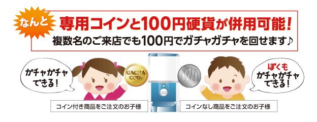 なんと専用コインと100円硬貨が併用可能!